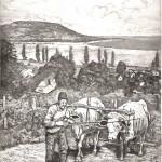 Ökrök -Balatoni rézkarc
