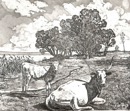 Szürkemarhák - Balatoni rézkarc