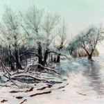 Téli erdő - Tájkép